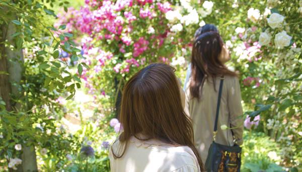 rose_garden_date1